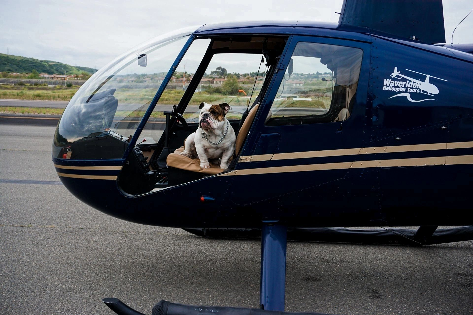 Temecula Wine Country and Beyond Helicopter Tour