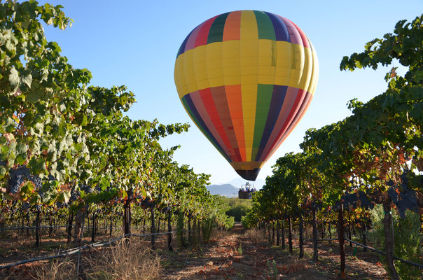 Temecula Sunrise Balloon Flight