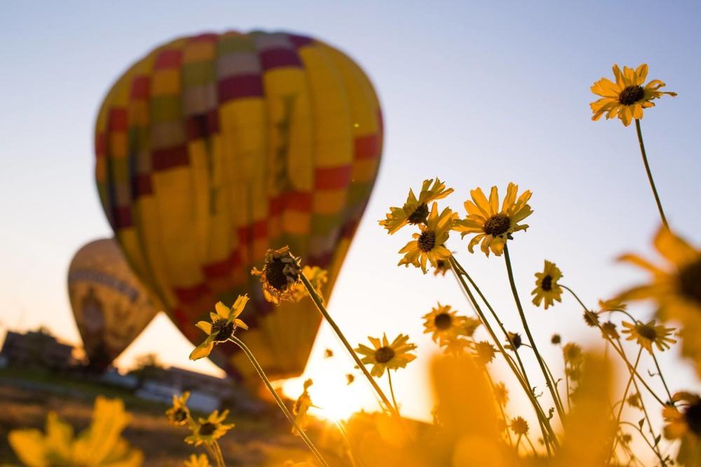 Del Mar Private Hot Air Balloon Rides