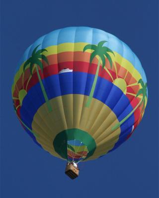 Hot Air Balloon Rides in Miami