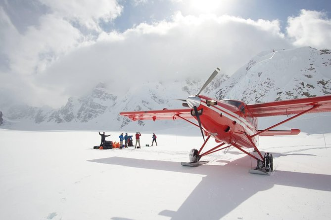 Denali Flyer Flightseeing Tour from Talkeetna