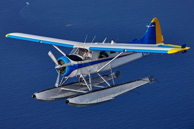 Seaplane Tour of Miami