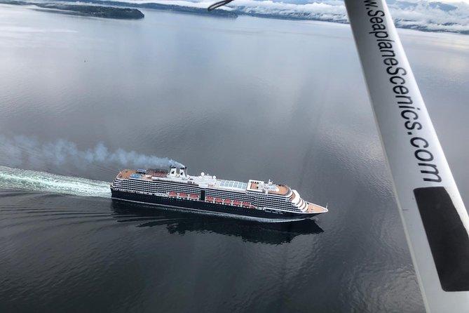 Olympic Mountains Seaplane Tour from Lake Washington