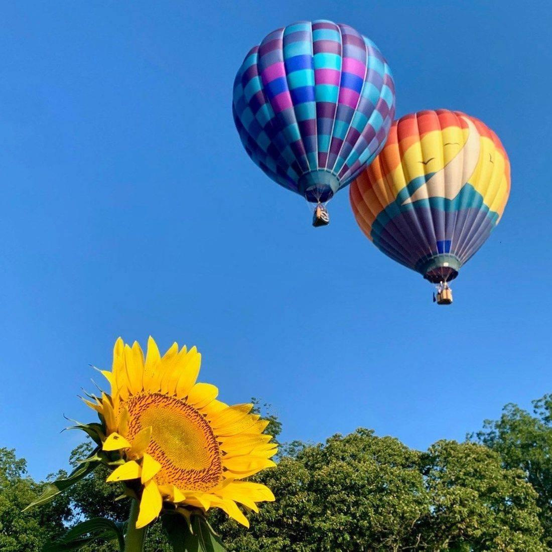 Smoky Mountain Air - Hot Air Balloon