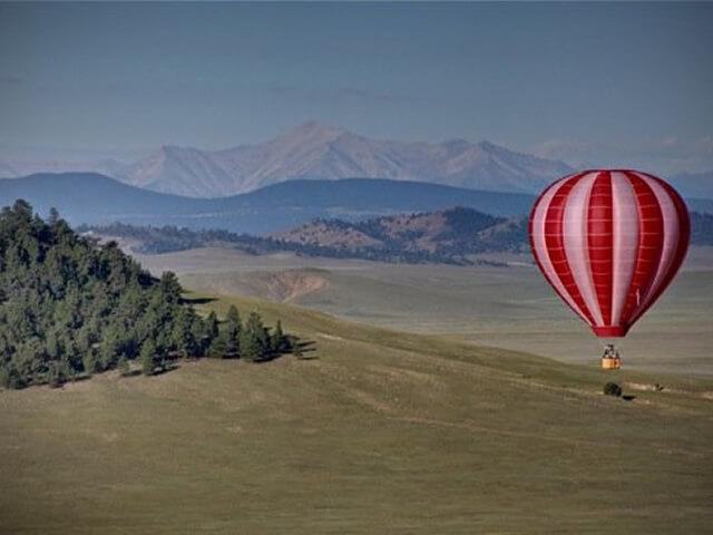 Life Cycle Balloon Adventures