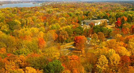 Sweet Helicopters - Fall Foliage