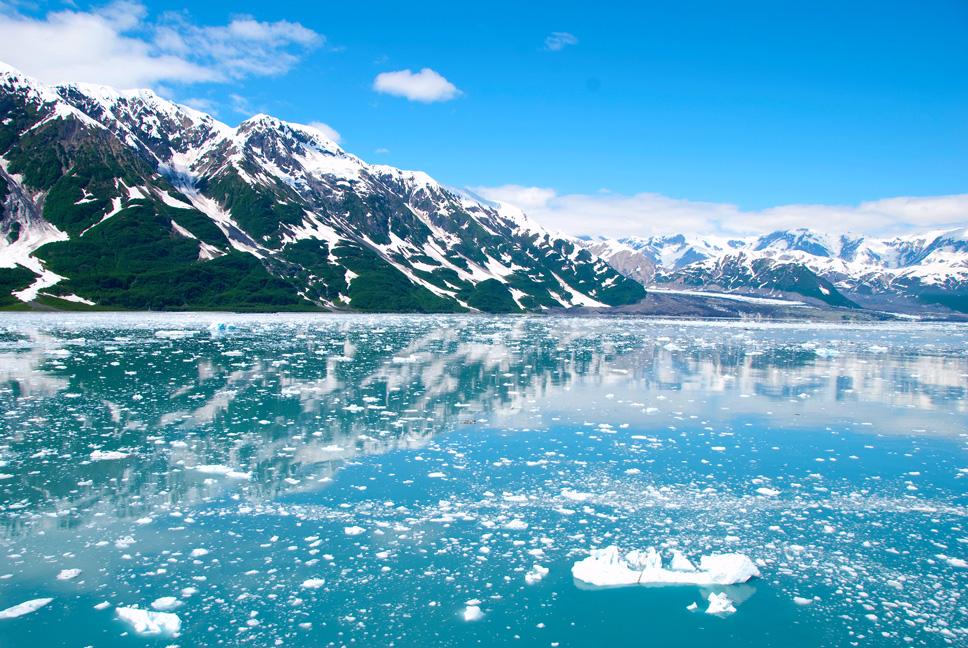 Ellison Air - Extensive Glacier & Wildlife Tour