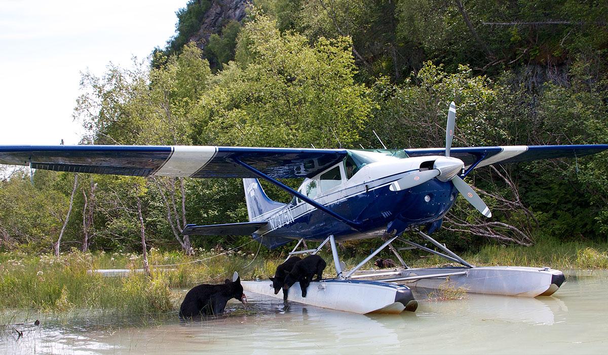 Ellison Air - Local Seaplane Tour