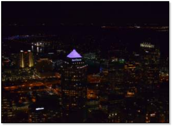 Tampa Night Helicopter Tour